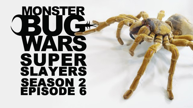MONSTER BUG WARS | Super Slayers | S2E6