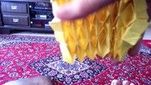 Origami Magic Carpet (Alex Ratner)-Demo