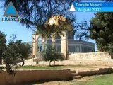 Archaeologist - The Government Is Allowing the Destruction Of The Temple Mount