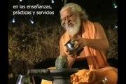 Maestro de los Himalayas Yogiraj Siddhanath - hamsa-yoga.org