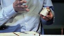 Une manip live : le cirque supraconducteur