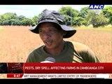 How El Nino affects farms in Zamboanga