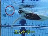 [游泳教學] 自由式划手各階段的手部動作