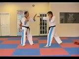 Learn Martial Arts Online - Kickboxing
