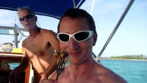 Pêche au harpon et nage avec les dauphins : vacances parfaites aux Bahamas