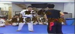 Kyokushin Karate vs Drunken Boxing and Kung Fu