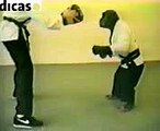 karate chimp funny fight amazing