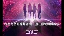 [Chinese Cover中文翻唱 ] 2ne1-Come Back Home(unplugged ver.)