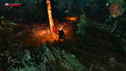 The Witcher 3 PS4 Gameplay de The Witcher 3 : Wild Hunt
