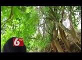 Beauty of Madikeri in Karnataka - Nice Place to Visit