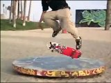 Rodney Mullen {I Love Skateboarding}