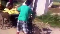 Punjabi Boys Have Fun In the Village│Latest Punjabi Funny Video?syndication=228326