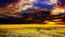 Immaculate Perfection :: Prem Rawat