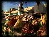 Marrakech Tensift Al Haouz: Visions d'avenir
