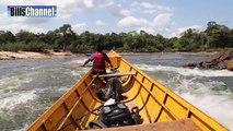 MONSTER VAMPIRE FISH - Amazon River Monsters