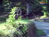 Hillclimb Subida Bergrennen Turckheim 2005  - Simca Rally  Honda - 2/5