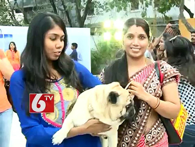 Responsible Pet Ownership is avilable in Blue Cross Pet Carnival 2014, says Akkineni Amala