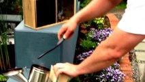 Beekeeping - Install Your 1st Packaged Bees And Use Smoker To Calm Bees
