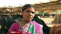 La peor sequía en décadas en India