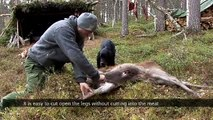 Kristoffer Clausen shooting and skinning a deer presenting EKA Swingblade knife