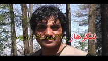 Pashto Album Da Nangarhar Guloona VOL 112 Part 8