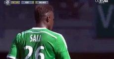 Loic Perrin Goal - Saint Etienne 1-0   Nice 10.05.2015
