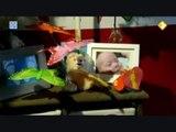 Kinderen overleden na vaccinatie - fragmenten Netwerk-tv 06-11-2009 deel 1.
