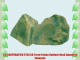 TIC CORPORATION TFS0 CN Terra-Forms Outdoor Rock Speakers (Canyon)