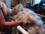 How to wash alpaca fleece