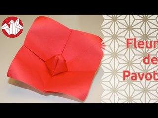 Origami - Fleur de Pavot - Poppy flower [Senbazuru]