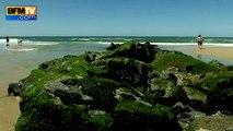 Tempêtes successives à Lacanau: à marée haute, la plage a disparu
