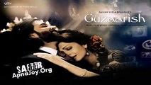 Tumse Guzaarish Hai Full Song - Guzaarish Songs 2010 Ft. Hrithik Roshan & Aishwarya Rai (Low)