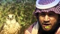 حامد الضبعان/رديه المقناص+رابط تحميلmb3