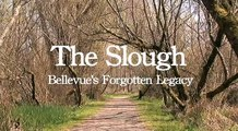The Slough - short film about the Mercer Slough