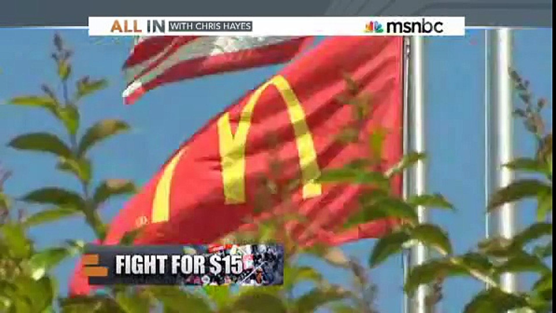 All In Ex McDonalds CEO battles Chris Hayes over minimum wage
