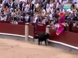 Toro salta a las Ventas (Madrid)