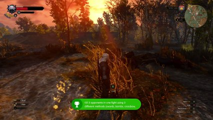 The Witcher 3 : les résolutions Xbox One (1080p échelle dynamique) de The Witcher 3 : Wild Hunt