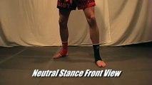 Taekwondo Kickboxing Basic Fighting Stances Tutorial (Kwonkicker)