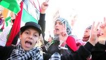 Zenga Zenga - Libyan uprising