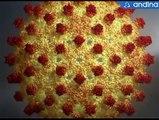 Cuidado: síntomas de la Hepatitis B son similares a los del resfrío y el estrés