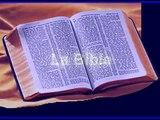 CHRETIENS ET JUIFS DANS LE CORAN 1/11 : Ce que le coran dit réellement d'eux