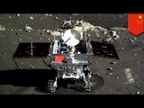 China's Jade Rabbit moon rover suffers technical problems