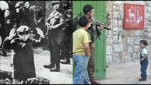 Holocaust in Palestine