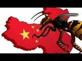 Asian Giant Hornet sting kills dozens in China