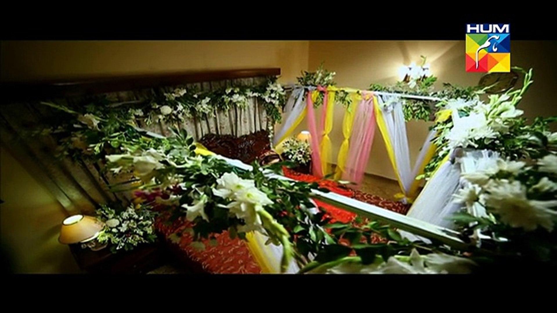 Aye Zindagi Episode 10 Full High Quality HUM TV Drama 14 May 2015