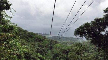 La canopée au Costa Rica : une minute pour être plus zen !