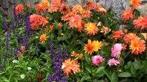 Autriche Tyrol Alpbach le plus beau village fleuri d'Autriche