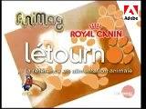 Loisirs Canins - Le dressage d'un chien