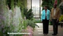 Delaware Art Museum featured in Brandywine Museums & Garden Alliance commercial (60 seconds)