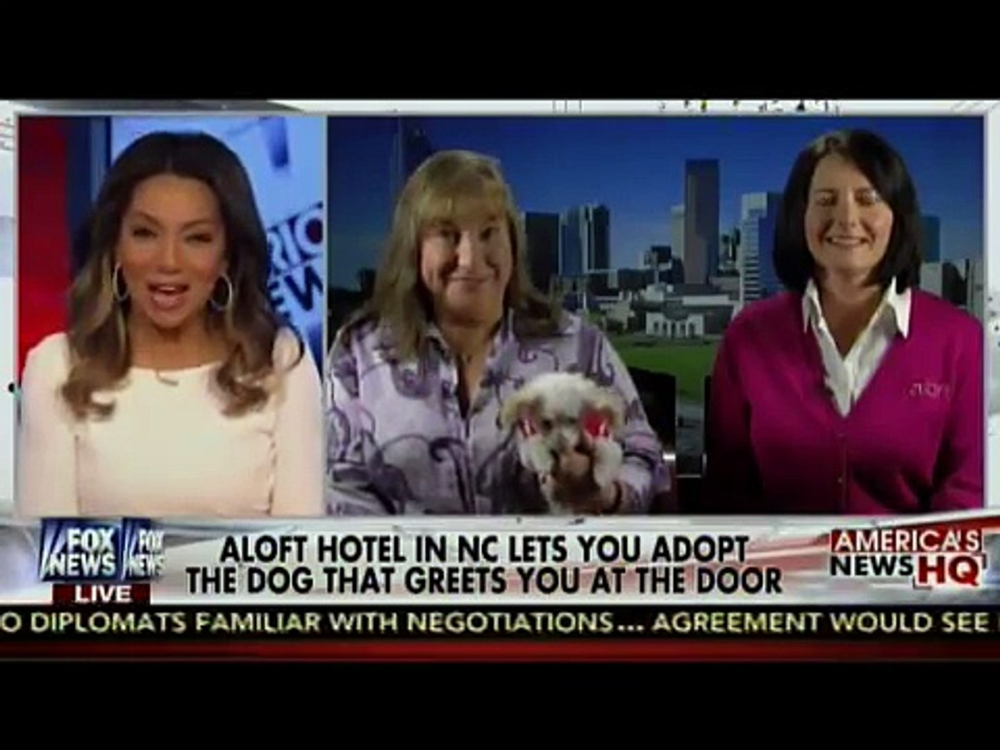 Charlie's Angels Animal Rescue and Aloft Hotel interview with Fox News Channel